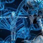 中华人民共和国人类遗传资源管理条例